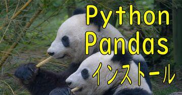 2020年度版 pandas インストール